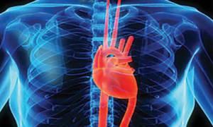 como afecta el ejercicio a mi corazon