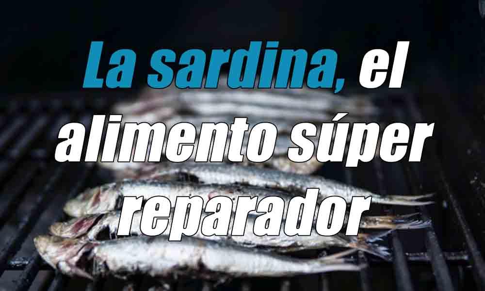 La sardina, el alimento súper reparador
